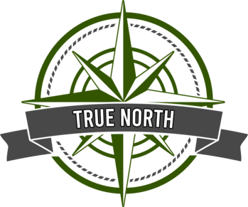 True North CBD logo